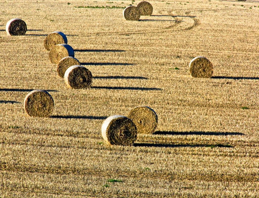 Bales of hay by redandwhite