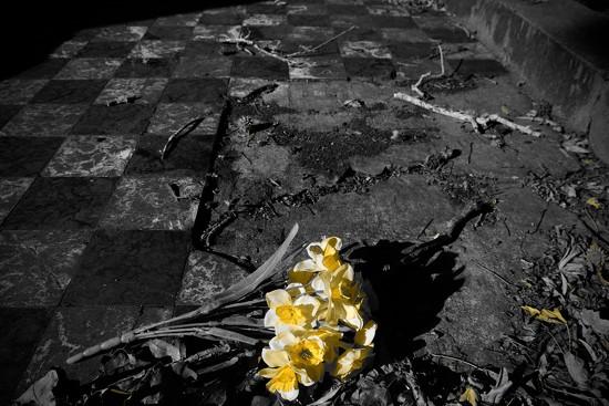 Tribute to the dead by dkbarnett
