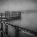 real fog, moodiness edit by jackies365