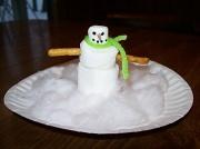 21st Dec 2010 - Snowman Craft