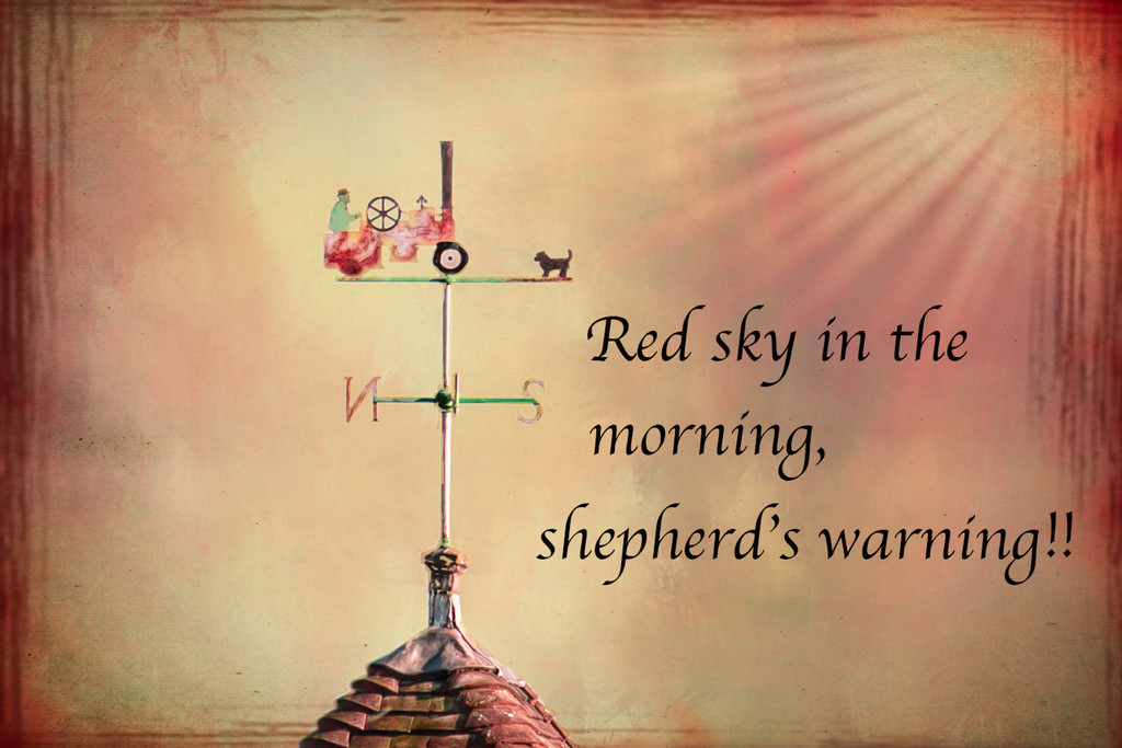 2017 01 24 - Weather Vane by pamknowler