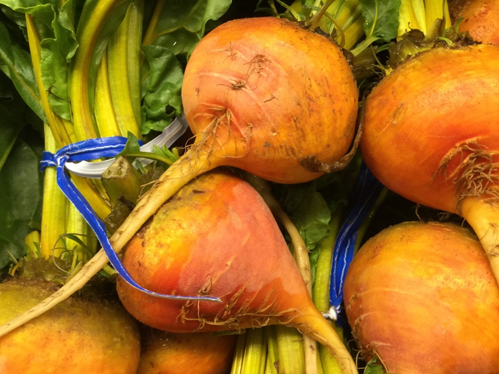 Beets by mcsiegle