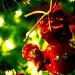 """""""Colors of Christmas"""" by iamdencio"""