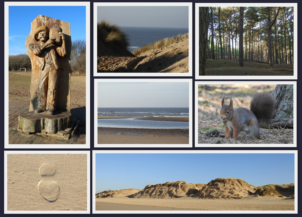 Formby Red Squirrel Reserve and Beach  by oldjosh
