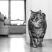 PLAY January - Nikon 50mm f/1.4G: On Guard! by vignouse