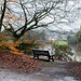 PLAY January - Nikon 50mm f/1.4G: Bench with a View by vignouse