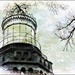 One Twin Lighthouse Through the Trees by olivetreeann