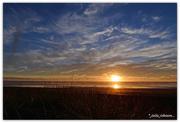 31st Jan 2017 - West Coast Sunset ..