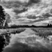 Lay of the Land Around Mendon Ponds Park by bill_fe