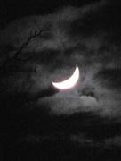 1st Feb 2017 - A new moon...
