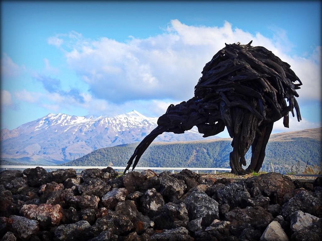 Giant Kiwi by yorkshirekiwi