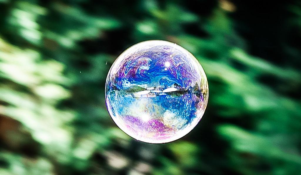 Fairy Bubble by purdey
