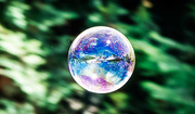 4th Feb 2017 - Fairy Bubble