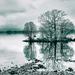 Loch Lomond by iqscotland