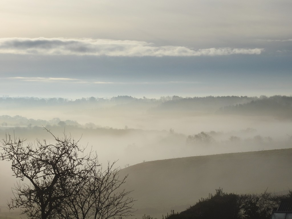 Layers of Mist by roachling