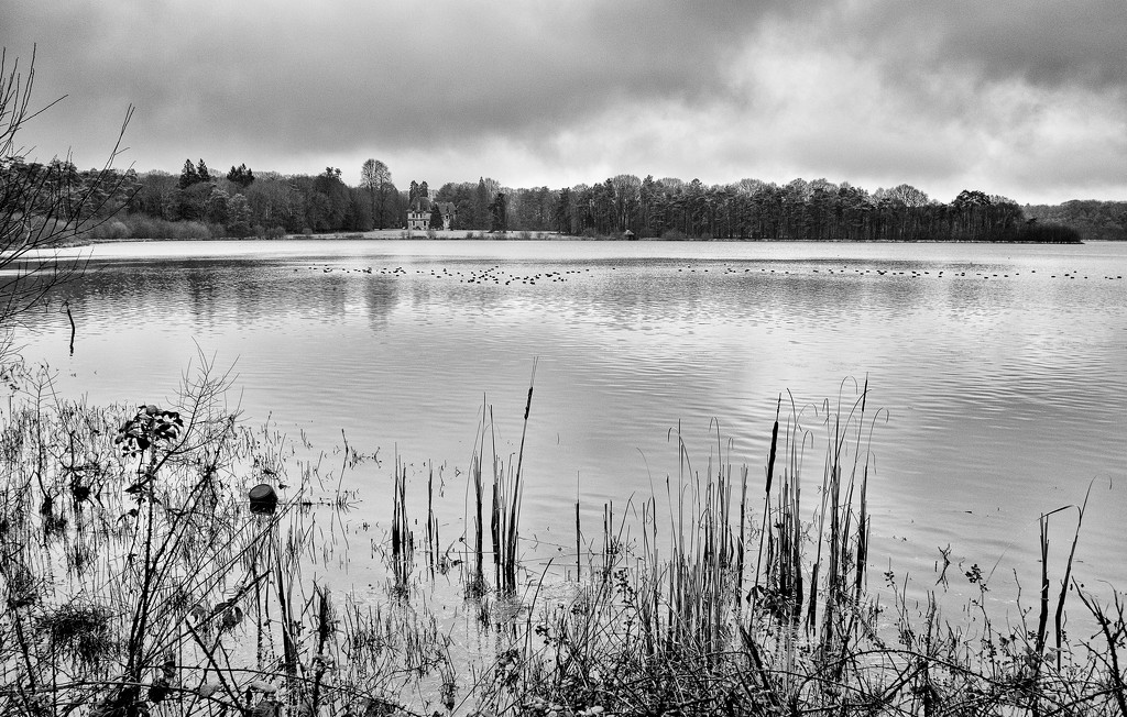 PLAY February - Fujinon 18mm f/2: Holly Path Lake by vignouse