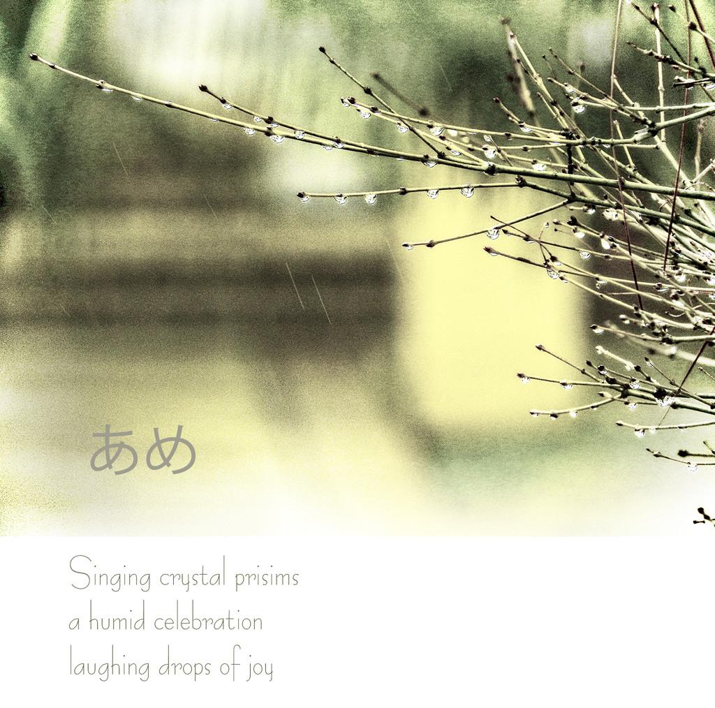 """Rain"" by Weezilou"