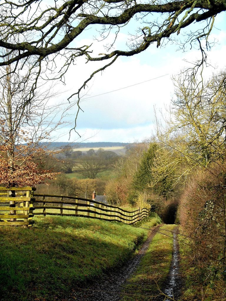 A view of the Hereford countryside.... by snowy
