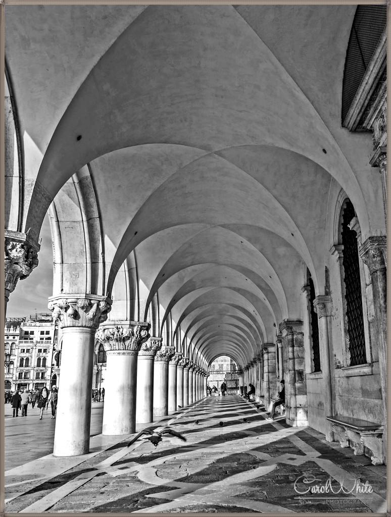 Arches,The Doge's Palace, Venice by carolmw