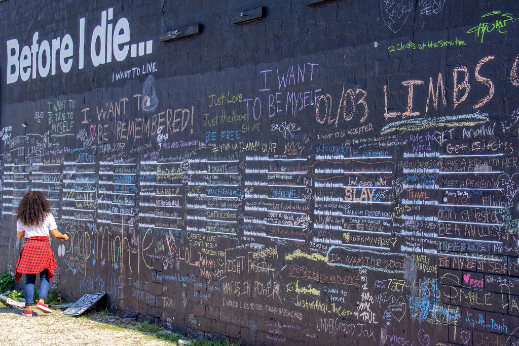 What's on your bucket list? by danette