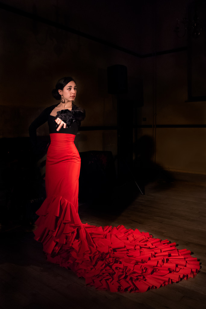 Flamenco Dancer 2 by vignouse