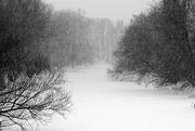 12th Feb 2017 - Snowy River ...