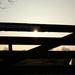 Backlit Fence II