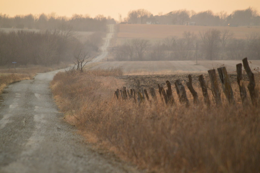 Country Road, Take Me Home by kareenking