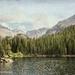 Bear Lake by lynne5477
