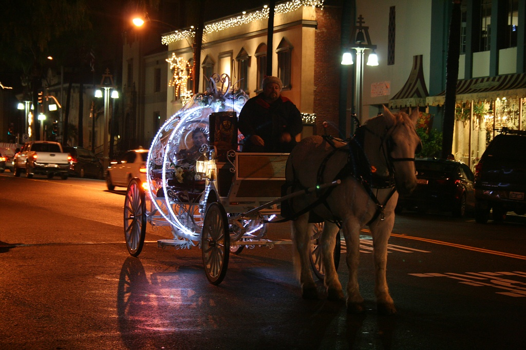 Horse and Carriage by kerristephens