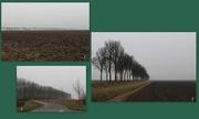 16th Feb 2017 - Road to Wolphaartsdijk