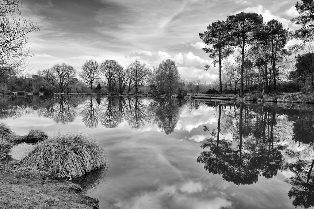 PLAY February - Fuji 18mm f/2: The Opposite Bank by vignouse
