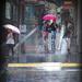 Pink Umbrella by dkbarnett