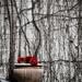 Flowerpot by vera365