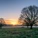 Sunrise  by rjb71