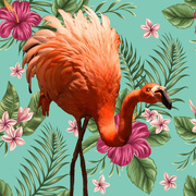 17th Feb 2017 - Flamingo Decor