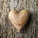 Heart #19