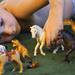 Eight Tiny Reindeer ...