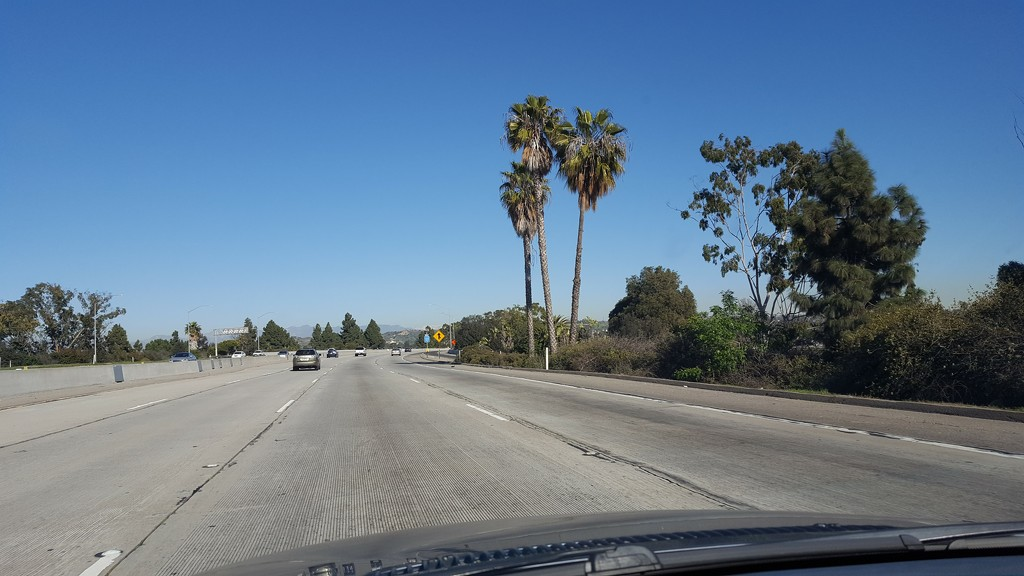 90 Freeway by bambilee