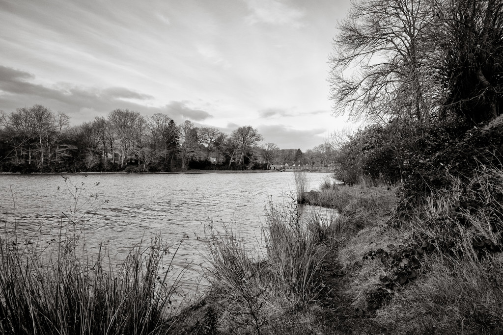 PLAY Feb - Fuji 18mm f/2: Paimpont Lake looking East by vignouse