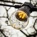 Light bulb moment by swillinbillyflynn