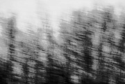 21st Feb 2017 - My First ICM - No need to comment