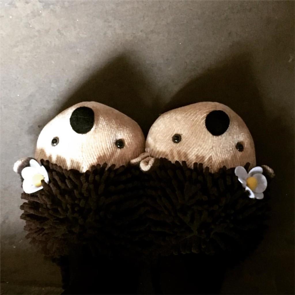 Hedgehog Slippers by naomi