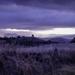 Evening Mist by purdey