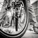 February - Big Boy Bike by newbank