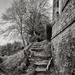 PLAY Feb - Fuji 18mm f/2: Tread Carefully by vignouse