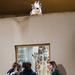 Window Watchers  by lesip