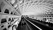 28th Feb 2017 - The Hypnotic Ceiling of the DC Metro Station