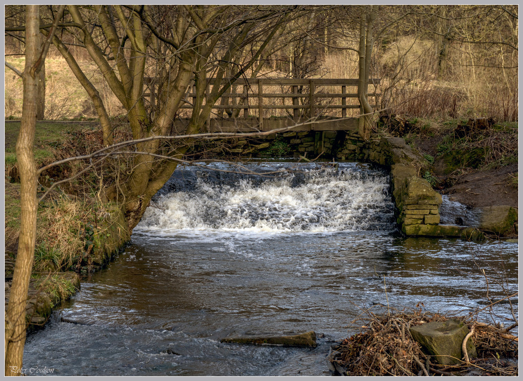 Babbling Brook by pcoulson