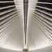 Oculus by Santiago Calatrava  by jyokota